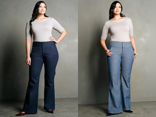 Plus Size Jeans Under $50 - Outfit Ideas HQ